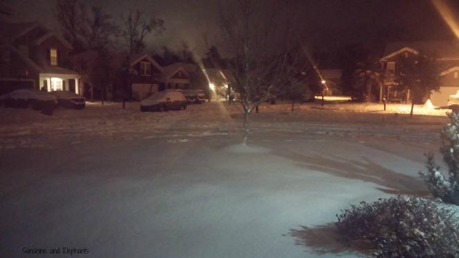 snowday11